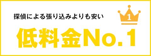 低料金NO1